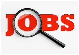 Jobs MARKETING đang cần người tại Dallas