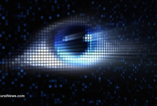 """World Is """"Sleepwalking Into Surveillance State"""" As COVID-19 Crackdowns Escalate"""